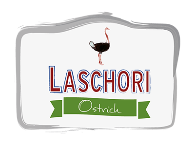 Laschori Strauß